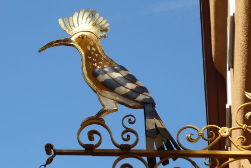 signboard figurehead bird