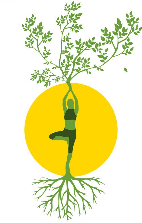 silhouette women tree