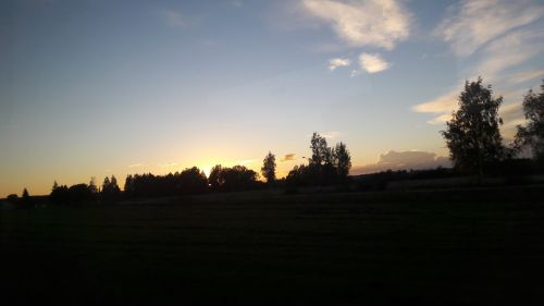 silhouette evening twilight