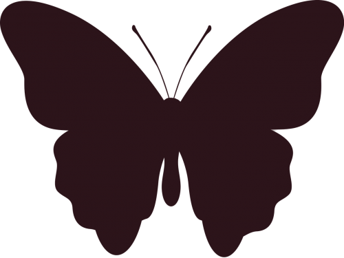 silhouette butterfly insect