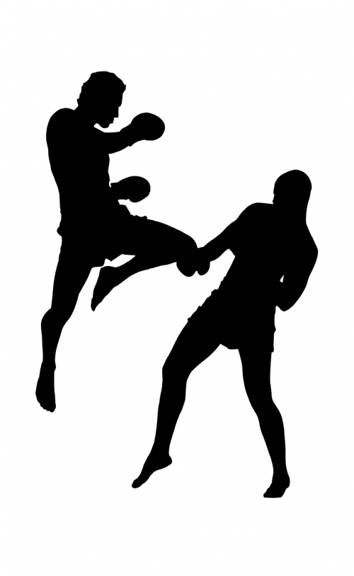 silhouette fight sports