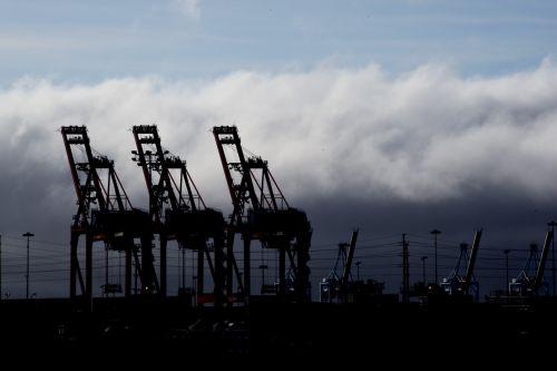 Silhouette Of Three Cranes