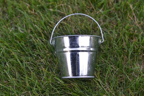 silver bucket  grass  bucket
