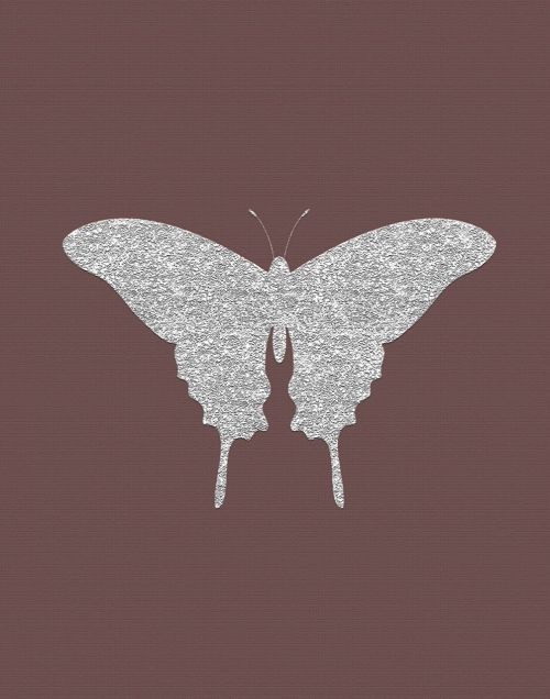 silver butterfly mauve insect