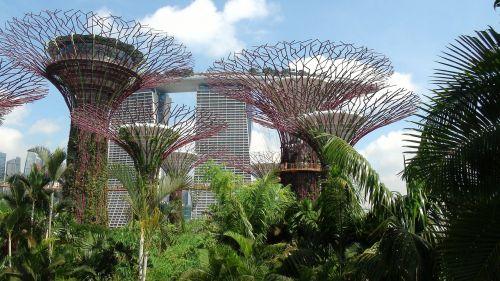singapore landmark garden