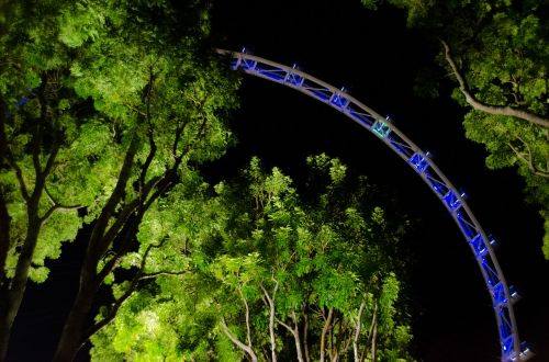 singapore flyers night