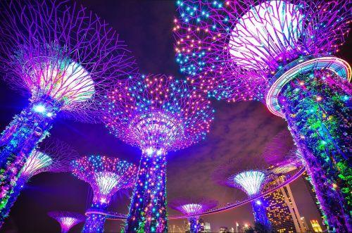 Singapūras,sodai prie įlankos,ilga ekspozicija,Marina bay smėliai,medžiai,architektūra,šiuolaikiška,miesto gyvenimas,naktinis gyvenimas,naktis,asija