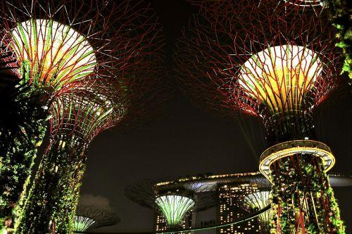 singapore nights lights