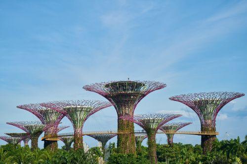 singapore park landscape