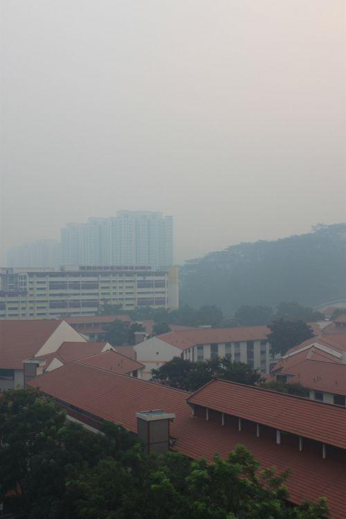 Singapore Haze 2013 June