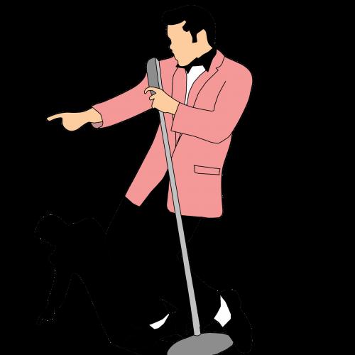 singer classic suit