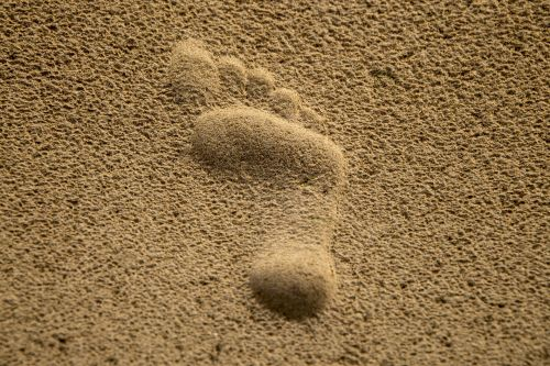 Single Footprint In Sand