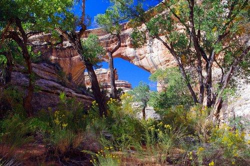 sipapu natural bridge  sipapu  natural