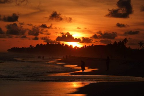 siri lanka  beach  sunset
