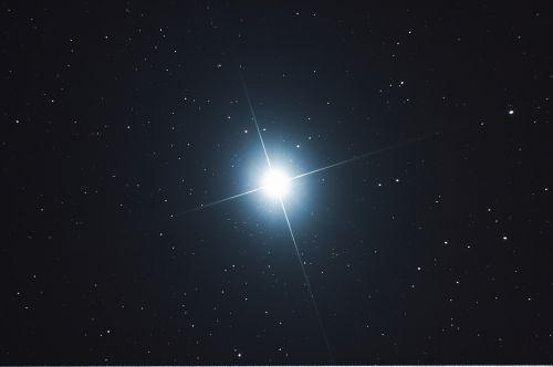 sirius star big dog