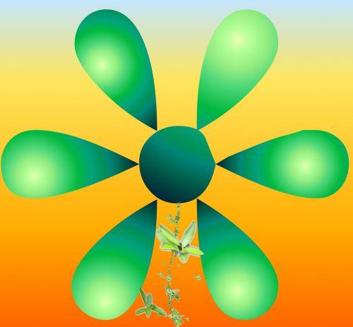 Six Petal Flower