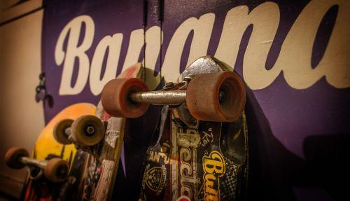 skateboards skateboard skateboarding