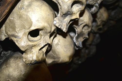 skeletal skull creepy