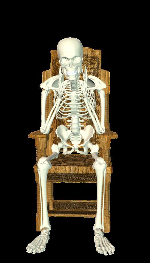 skeleton chair sit