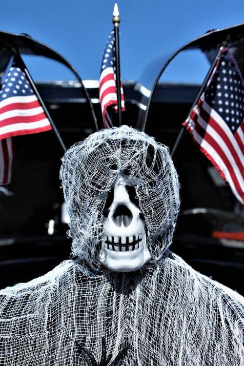 skeleton halloween halloween decoration