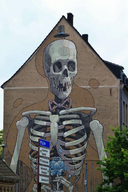 skeleton frame bone
