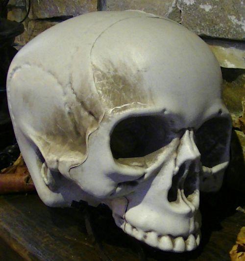 baugus, skeletas, skeletas, kaukolė, kaukolės, creepy, įsiuvas, gory, siaubas, Halloween, vaiduoklis, vaiduoklis, vampyras, ghouls, Zombie, zombiai, baimė, bauginantis, košmaras, košmarai, velnias, velniška, skeleto kaukolė