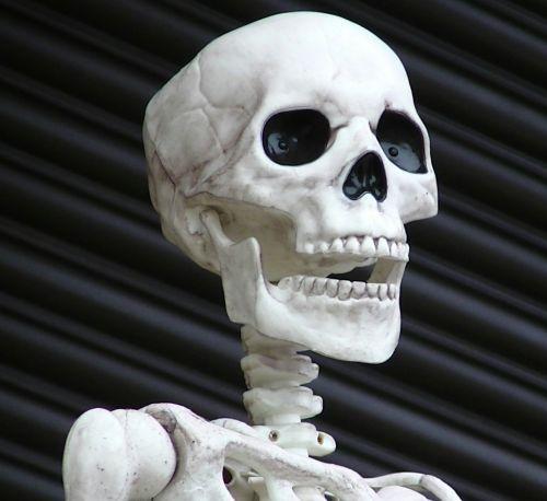 baugus, skeletas, skeletas, kaukolė, kaukolės, siaubas, Halloween, vaiduoklis, vaiduoklis, vampyras, ghouls, Zombie, zombiai, baimė, bauginantis, košmaras, košmarai, velnias, velniška, skeleto kaukolė