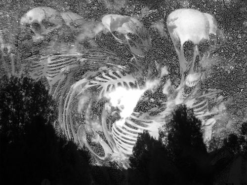 Skeletons Haunt Sky - Black & Wh