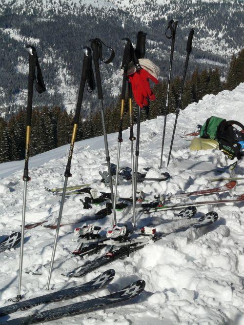 ski poles sticks ski