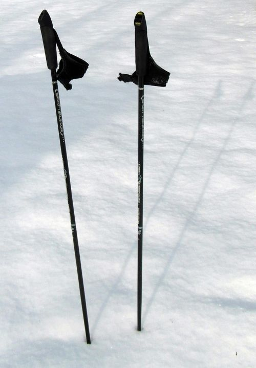 ski poles trekking hiking