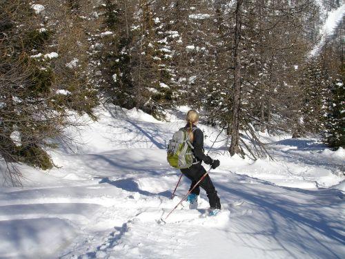 backcountry skiiing ski mountaineering ski touring