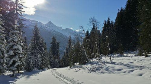 backcountry skiiing trace skiing