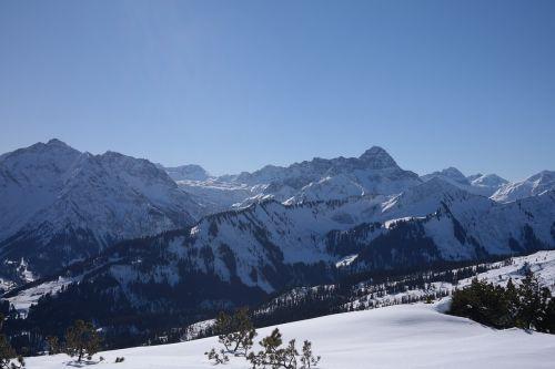 backcountry skiiing aries stone ski