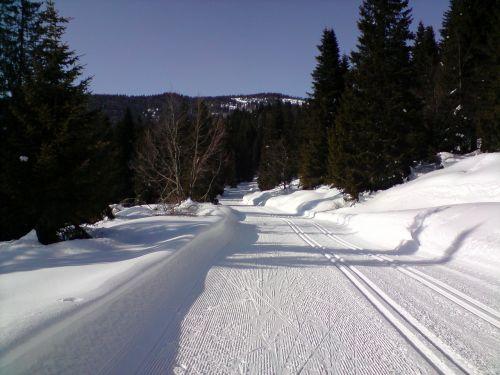 ski trails cross country skiing cross-country ski trail
