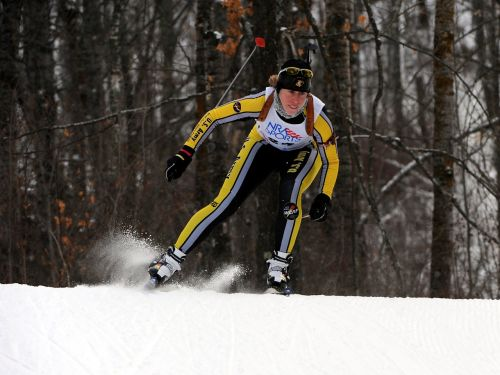 skier cross country snow