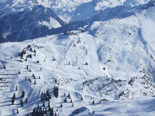 skiing sun snow