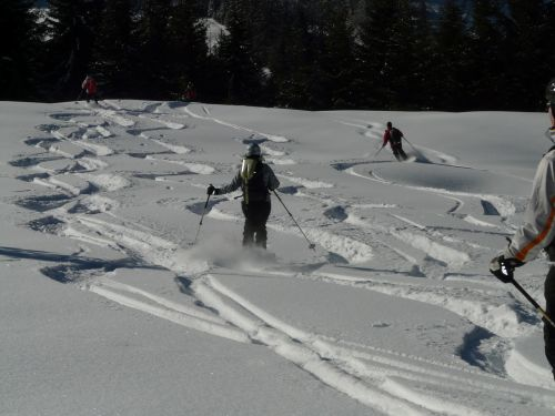 skiing skiers departure
