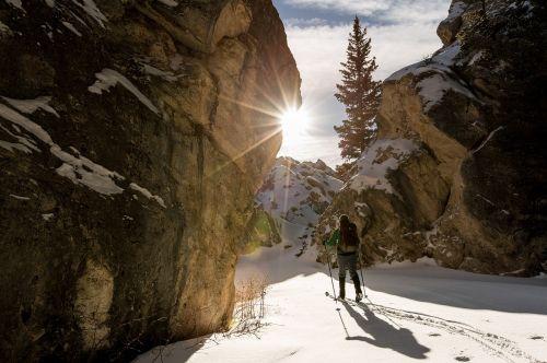 skiing cross country snow