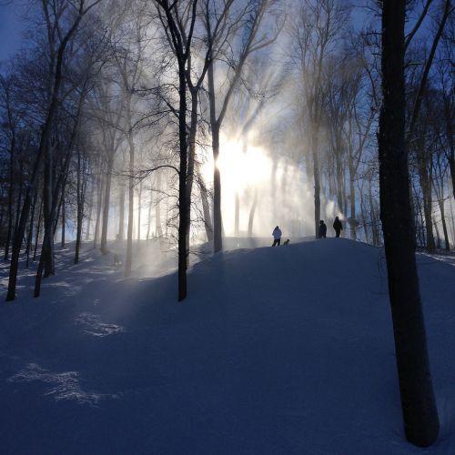 skiing skiers snowboarders