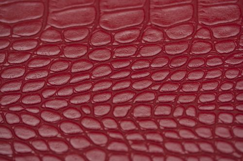 skin texture red