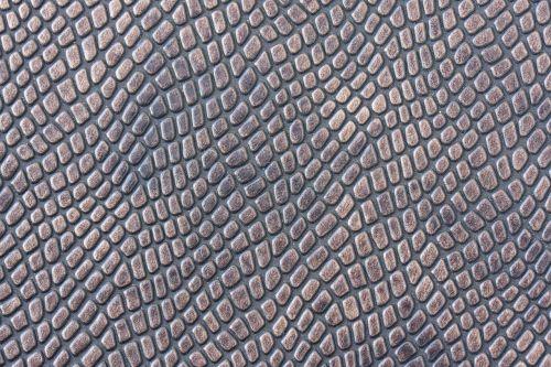 skin snake texture