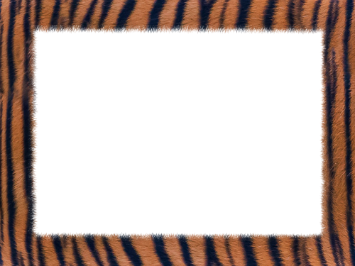 skin tiger texture geometry