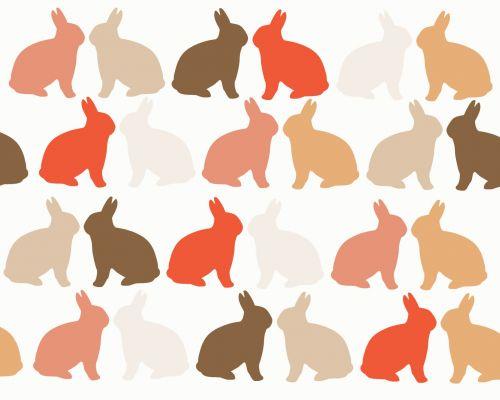 Skin Tone Rabbits Background