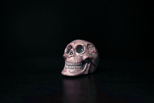 skull paperweight memento