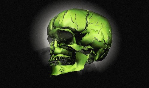 skull bone head