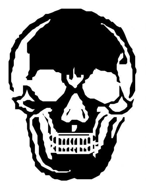 skull human skeleton