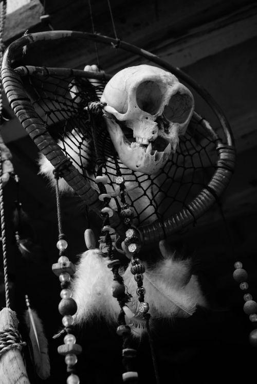 skull halloween horror