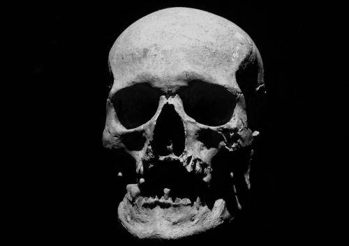 skull corpse halloween
