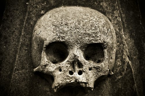 skull  skeleton  horror