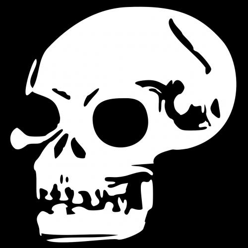 skull head human